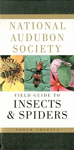 (National Audubon Society Field Guide to Insects and Spiders: North America (National Audubon Society Field Guides))