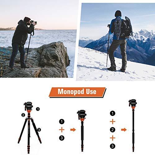 Fluid Head Tripod, GEEKOTO Video Tripod Lightweight Carbon Fiber Tripod 79 inch for Canon Nikon Sony DSLR Camera Camcorder, Max Loading 17 lb