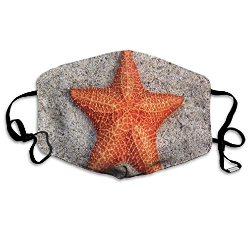 Liayai7. Anti Dust Mask Surprising Facts About Starfish,Surgical Mask Winter Healthy Washable for Boys Halloween Mouth Masks ()