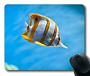 Beautiful Corlorful Fish Design Oblong Mouse Pad by Cases & Mousepads by icecream design