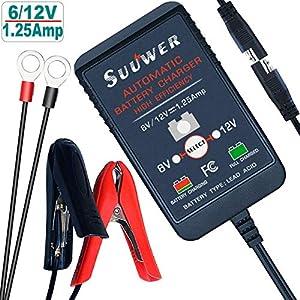 Amazon Giveaway Suuwer Smart Battery Charger