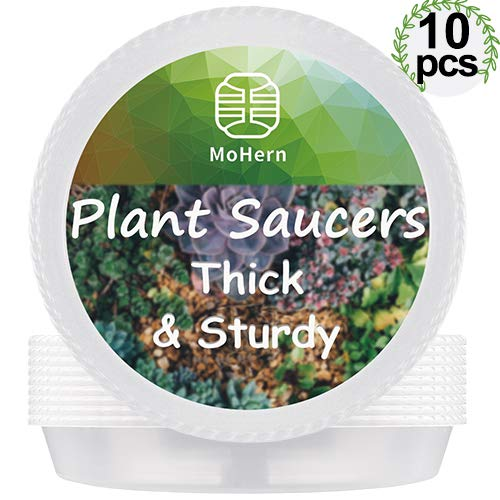 MoHern Plant Saucers for Pots, 10 Pcs Thick and Sturdy, Round Plastic Plant Trays for Grow Bags, Terra Cotta Pots, Flower Planter Indoor Outdoor (About 10 Inch, Clear)