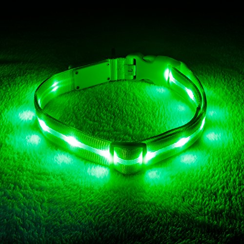 Blazin' Safety LED Dog Collar - USB Rechargeable with Water Resistant Flashing Light - Medium Green