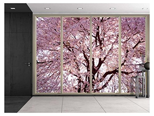 Branches Filled with Pink Cherry Blossom Flowers Viewed From Sliding Door Creative Wall Mural Peel and Stick Wallpaper