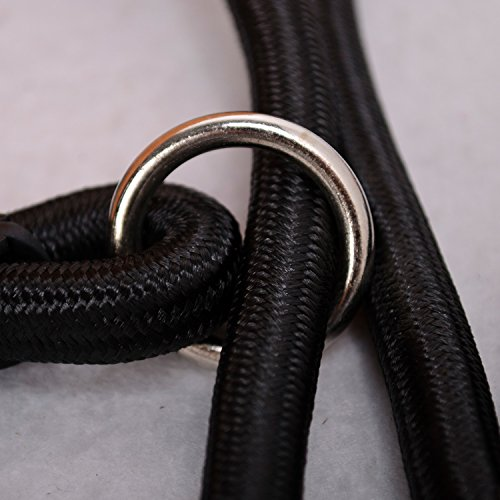 well-wreapped Nylon Rope Dog Whisperer Cesar Millan Style Slip Training Leash Lead and Collar
