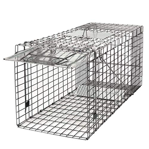 HomGarden Live Animal Cage Trap 32'' Steel Humane Release for sale  Delivered anywhere in USA