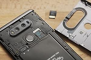 Kingston Canvas Go! SDCG2/32GBSP - Tarjeta MicroSD de 32 GB, Adaptador SD no Incluido