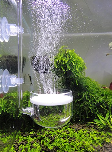 Music Glass CO2 Diffuser for Aquarium Plant (2'' for tank beyond 75 gallons) by JARDLI