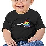 NINJOE Babys Boy's & Girl's Eeveelutions Pink Floyd Awesome Shirts Size 24 Months Black
