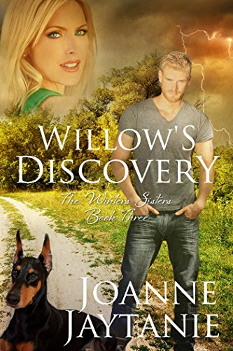 Willow's Discovery (The Winters Sisters Book 3) by [Jaytanie, Joanne]