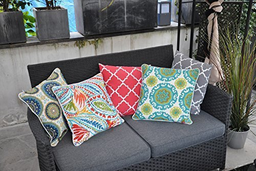 "Pcinfuns Set of 2 Patio Indoor/Outdoor All Weather Decorative Throw Pillow Cover Cushion Case for Replacement 18"" x 18""-Phoenix - 100% Spun Polyester. Package includes:2 pcs 18 x 18 inches square toss pillow covers, insert NOT included. Zipper closure easy for pillow covers replacement. - patio, outdoor-throw-pillows, outdoor-decor - 51lCoLrW9dL -"