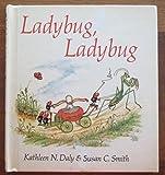 img - for Ladybug Ladybug book / textbook / text book