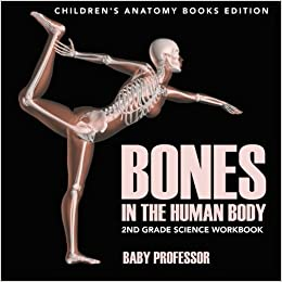 Bones in The Human Body: 2nd Grade Science Workbook : Children's Anatomy Books Edition