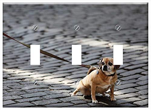 (Switch Plate Triple Toggle - Dog Pet Leash Animals Cobblestone )