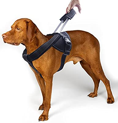 YOGADOG - Heavy Duty Dog Harness, Prevent Pulling, Soft Padded with Special Extended Integrated Short Leash Design, Reflective Stitching, for Medium and Large Dogs