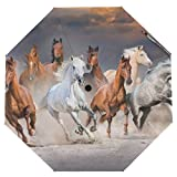 Cooper girl Running Horse Umbrella Sun Rain Travel Umbrella with UV Protection for Kids Girl Boys