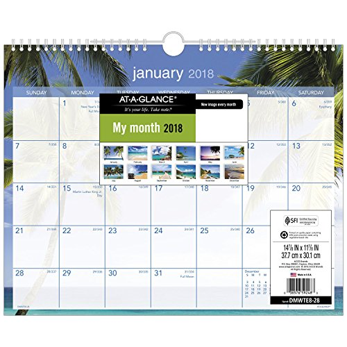 "AT-A-GLANCE Wall Calendar, January 2018 - December 2018, 15"" x 12"", Wirebound, Tropical Escape (DMWTE828)"