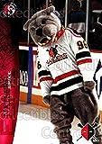 (CI) Mascot Hockey Card 1996-97 Wheeling Nailers 23