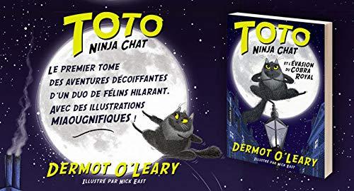 Toto Ninja chat et lévasion du cobra royal: Amazon.es ...
