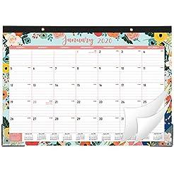 Desk Calendar 2020 - Desk/Wall Monthly C...