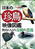 シンフォレストDVD 日本の珍鳥 映像図鑑 野鳥たちとの奇跡の遭遇