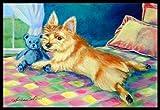 """Caroline's Treasures 7275MAT Norwich Terrier Indoor Outdoor Doormat, 18"""" x 27"""", Multicolor"""