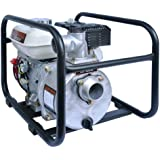 Red Lion 4RLAG-2H 4-HP Honda Engine Driven 2-Inch Water Pump