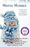 img - for Winter Wonder: A Collection of Stories for Children & Young Adults book / textbook / text book