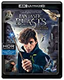Fantastic Beasts and Where To Find Them (Bilingual) [4K UHD + Blu-Ray + UV Digital Copy]