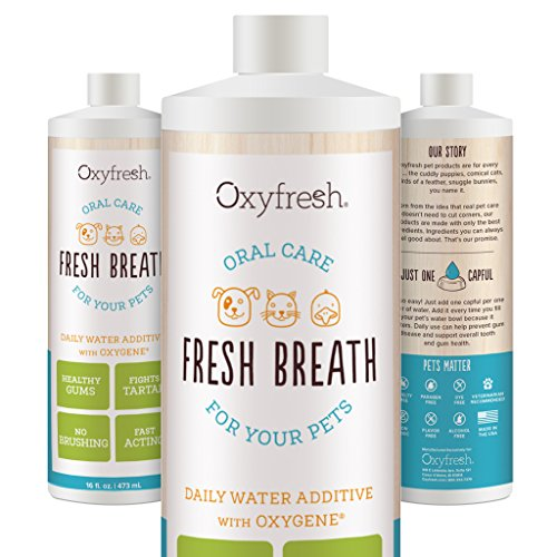 Oxyfresh Premium Pet Dental Care Solution (16oz): Best Way To Eliminate Bad Dog Breath & Cat Breath - Fights Tartar, Plaque & Gum Disease! - So easy, just add to water! Vet Recommended!