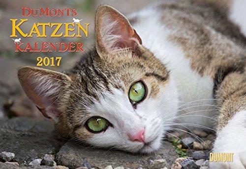 DuMonts Katzenkalender 2017 - Broschürenkalender - Wandkalender - mit Schulferienterminen - Format 42 x 29 cm: mit kurzweiligen Katzengeschichten