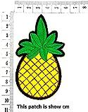 Pineapple Cactus Fantasy Pineapple Fruit Cartoon
