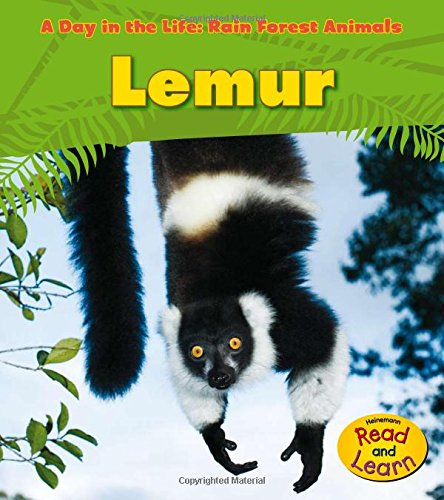 Forest Life - Lemur (A Day in the Life: Rain Forest Animals)