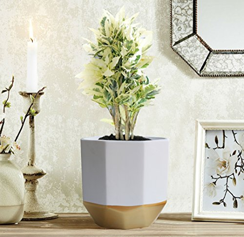 """LA JOLIE MUSE White Ceramic Flower Pot Garden Planters 6.5"""" Pack 2 Indoor Plant Containers with Gold and Grey Detailing"""