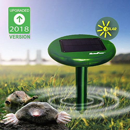 MaximalPower Outdoor Yard Sonic Solar Powered Mole Mouse Gopher Rodent Pest Repeller with LED Light