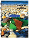 Student Assignment Planner Sea Glass Cover Academic Calendar 7 x 10 School Year (Beach)