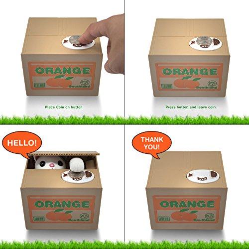 Katzen Box als Geschenk