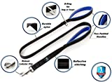 Dog Leash Two Handle by QOL TOP, Dog Lead 6ft, Heavy Duty Leash, Dog Leashes with Dual Padded Handles for Medium or Large Dogs, Dog Training Leash (6ft lead, black-blue)