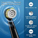 Rotary Electric Toothbrush for Adults, Rechargeable
