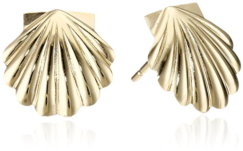 14k Yellow Gold Shell Stud Earrings 14k Yellow Gold Shell