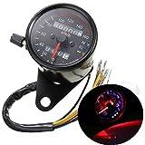Iztor Universal black Motorcycle Dual Odometer Speedometer Gauge 0-160km/h LED Backlight Signal Light Neutral Headlight Indicator
