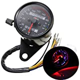 Iztor Universal black Motorcycle Dual Odometer Speedometer Gauge 0-160km/h LED Backlight Signal Light Neutral Headlight Indicator