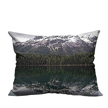 Amazon.com: Bedsure - Fundas de almohada con diseño de ...