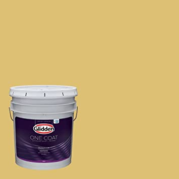 Amazon Com Glidden Exterior Paint Primer Yellow Exterior Paint Tropical Siesta One Coat Satin 5 Gallon Home Improvement