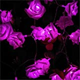 BGFHDSD 6Pcs/Lot Soft Wedding Rose LED String Lights AA Battery Rosa Boda Festival Party Holiday Supplies Lamps Lumiere Boda Luz Pink