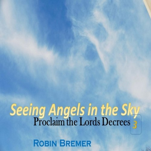 Read Online Seeing Angels in the Sky: Proclaim The Lords Decree (Seeing Angles in the Sky) (Volume 3) pdf