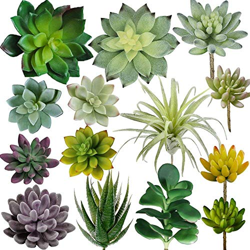 Supla Pack of 14 Assorted Artificial Succulents Plants Unpotted Faux Succulents Fake Mini Aloe Echeveria Agave Kalanchoe Succulents Plants Tillandsia Air Plant Stems for Floral Arrangement