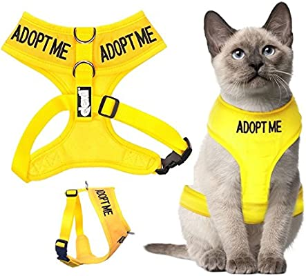 Dexil Arnés para gato con código de colores Chaqueta Alerta ...