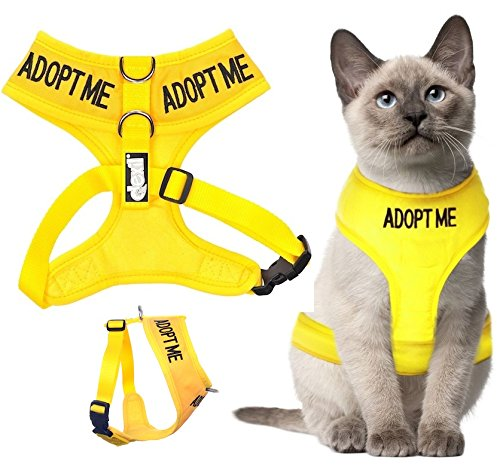 Dexil Color Coded Cat Harness Warning Alert Vest Padded and Water Resistant Yellow ADOPT ME (L-XL) by Dexil Limited (Image #4)