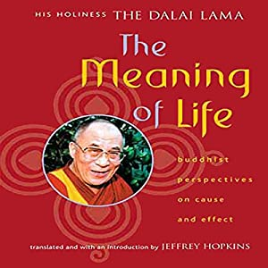 The Meaning of Life Audiobook